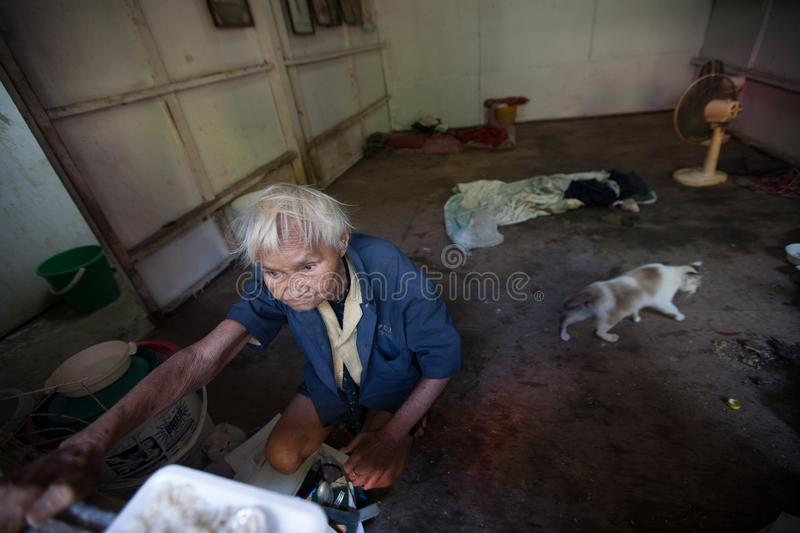 A old woman live alone with her cats in the Klong Toey slum in Bangkok. BANGKOK, THAILAND - DECEMBER 3, 2007 : A old woman live alone with her cats in the Klong stock images