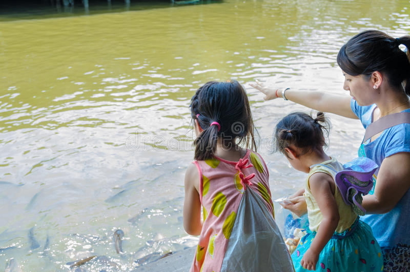 Bangkok, Thailand : Japanese tourists are feeding fish. Japanese tourists are feeding fish at house artist. Artist House is located at Soi Charan Sanit Wong 3 stock images