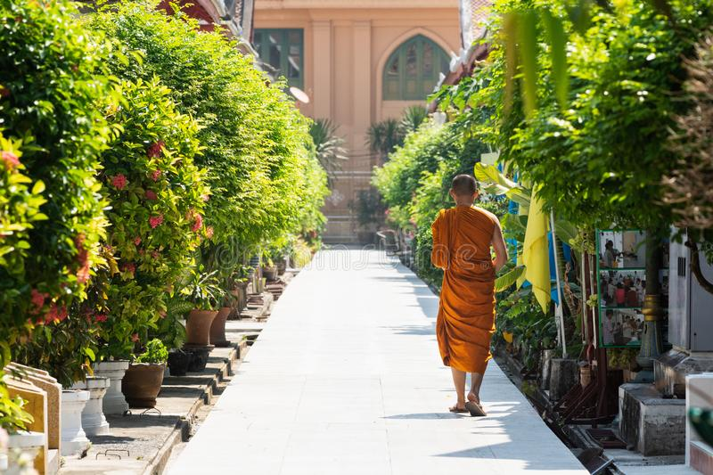 Bangkok, Thailand - March 2019: buddhist monk walking along the alley towards Golden Buddha Temple stock photography