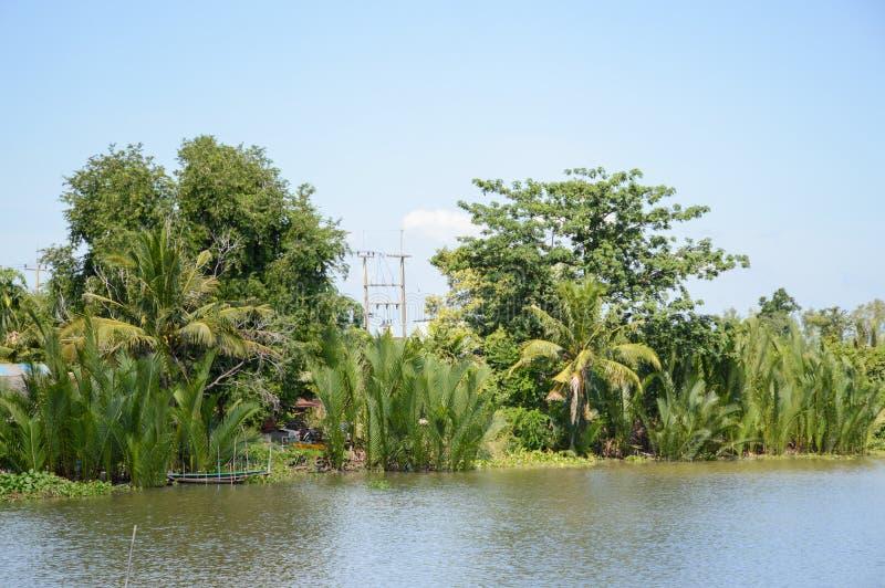 Bangprakong river in chachoengsao thailand. Close up bangprakong river in chachoengsao thailand stock photography