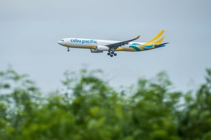 Banguecoque, Tailândia, o 12 de agosto de 2018: Registro de Cebu Pacific Não RP-C3348 fotos de stock