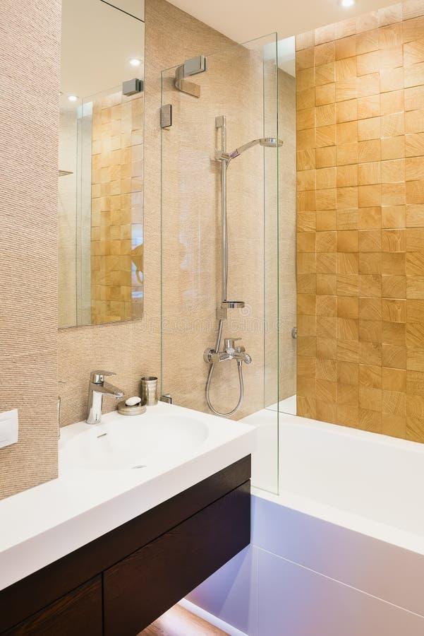 Banheiro interior do convidado nos tons mornos, verticais Interior, projeto imagem de stock royalty free