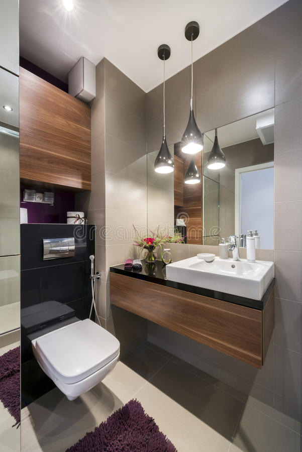 Banheiro luxuoso cinzento e de madeira imagens de stock