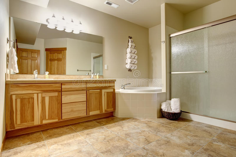 Banheiro mestre agradável com os grandes armários do chuveiro e do woone imagem de stock