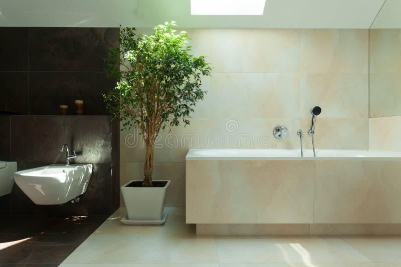 Banheiro moderno minimalista na luz do dia fotografia de stock royalty free