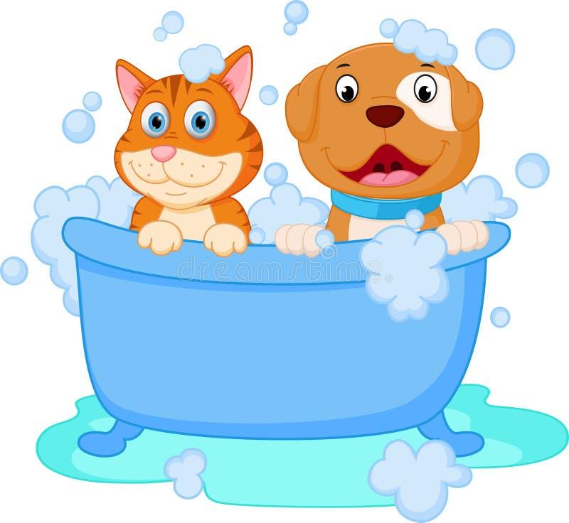 Banho bonito do cão e gato ilustração do vetor