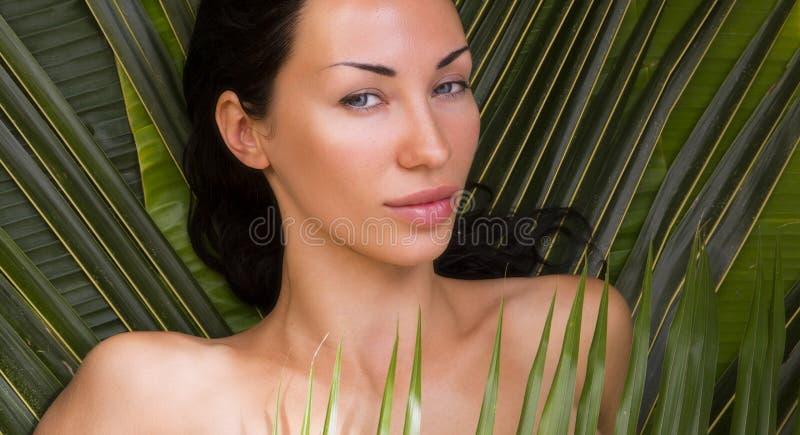 Banho de sol bonito 'sexy' da mulher entre folhas de palmeira Termas exteriores, fotos de stock royalty free