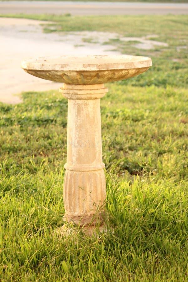 Banho do pássaro fotografia de stock royalty free