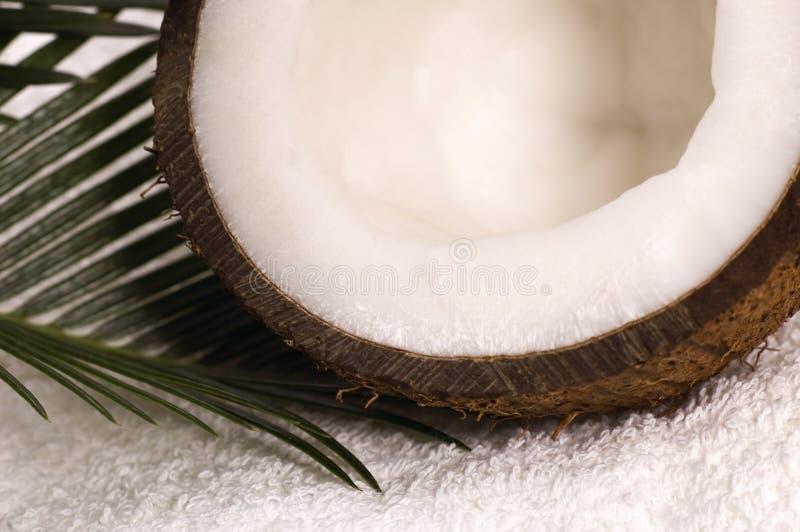 Banho dos Cocos imagens de stock