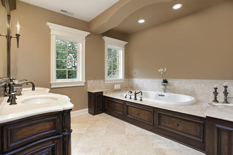 Banho mestre com guarnição de madeira escura imagens de stock royalty free