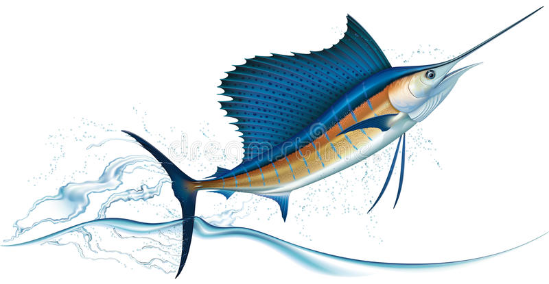 banhoppningsailfish royaltyfri illustrationer