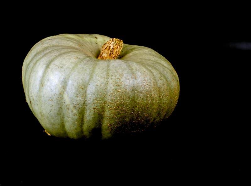 Download Bania zdjęcie stock. Obraz złożonej z rolnictwo, ogród - 106907104