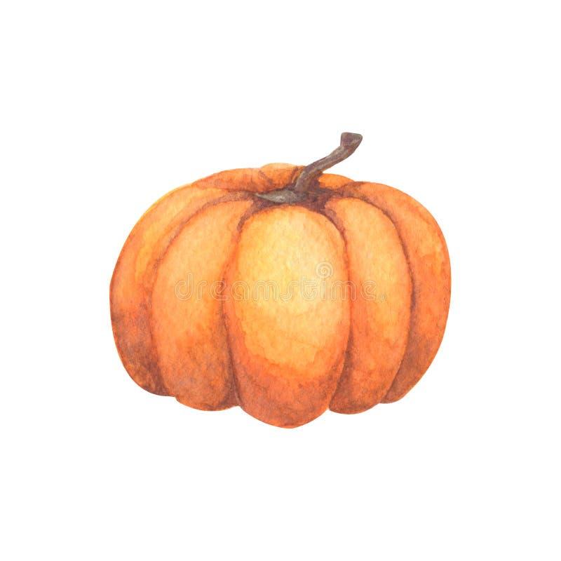 Bania Akwareli ręka malująca bania dla Halloween i spadku na białym tle Jesieni żniwa Jarski surowy jedzenie ilustracja wektor