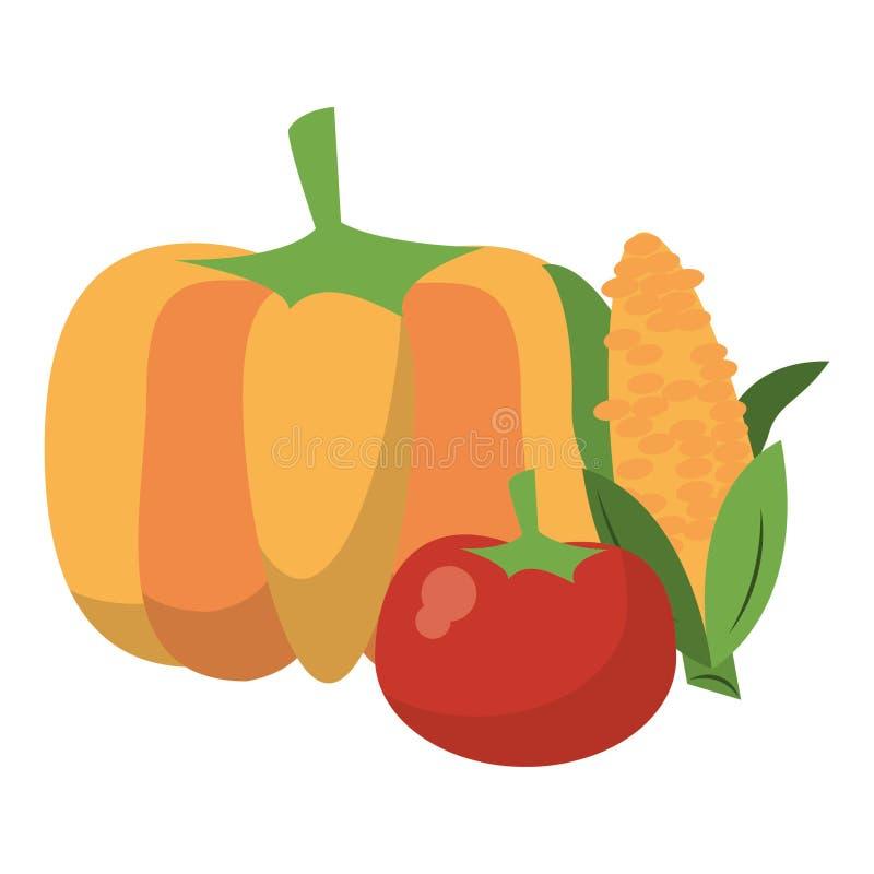 Bania i pomidor z kukurydzanymi ?wie?ymi warzywami royalty ilustracja