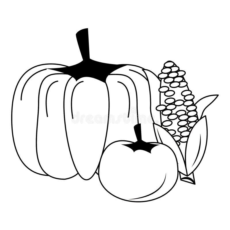 Bania i pomidor z kukurydzanymi ?wie?ymi warzywami w czarny i bia?y royalty ilustracja