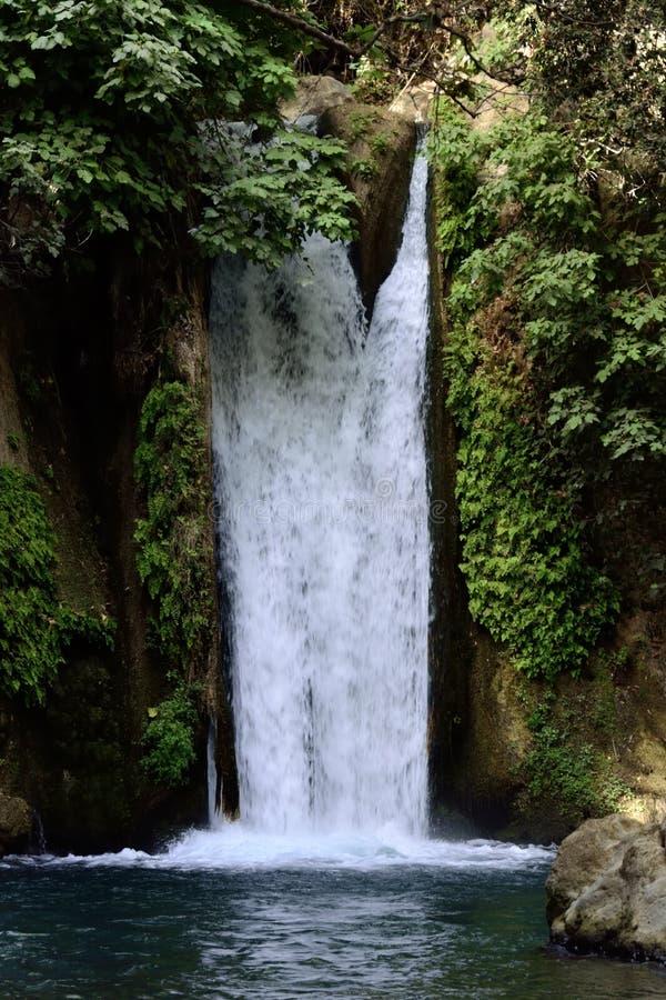 Banias vattenfall, Israel royaltyfri foto