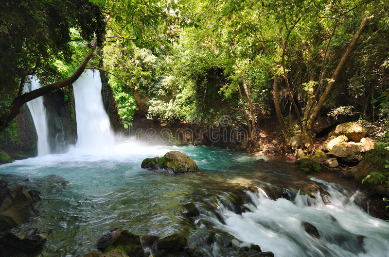 Banias Waterfall royalty free stock photos