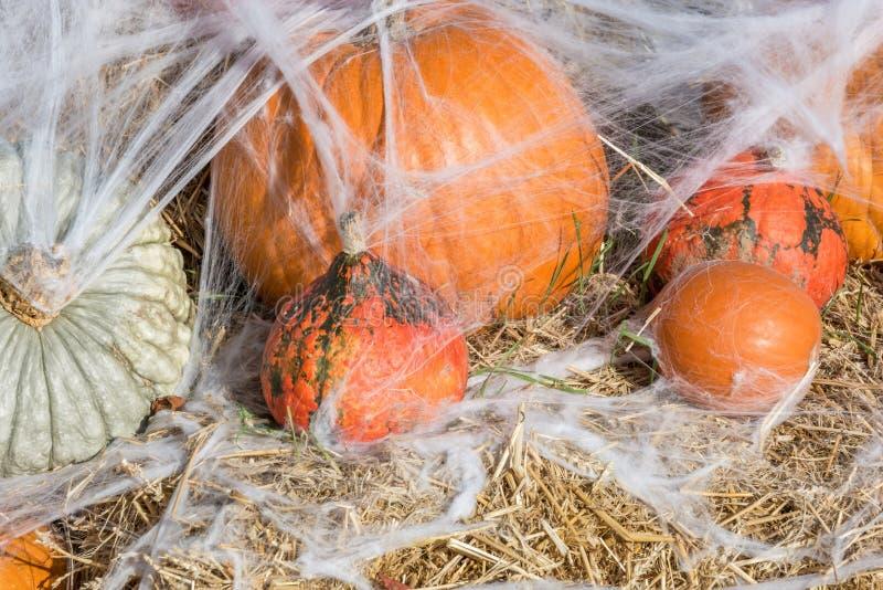 Banie i pajęczyny jako dekoracja dla Halloween zdjęcie stock