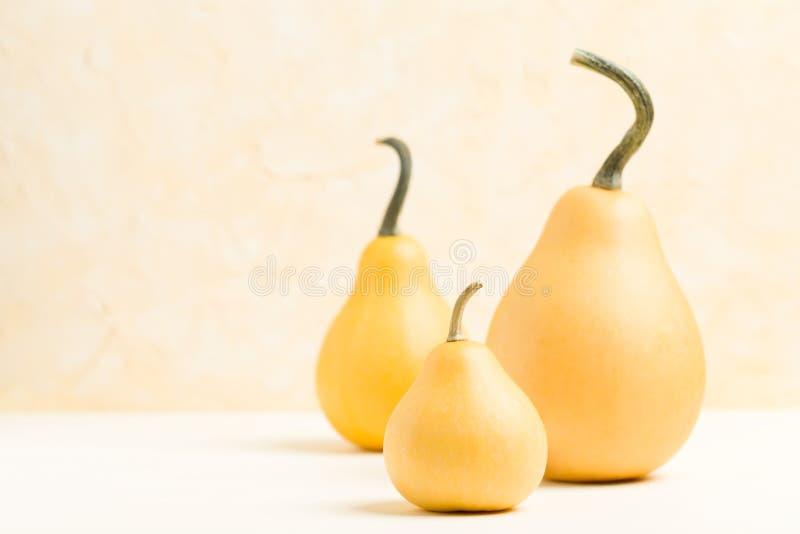 Banie na pastelowym żółtym tle z kopii przestrzenią - horyzontalny sztandar z jesieni dojrzałymi warzywami fotografia stock