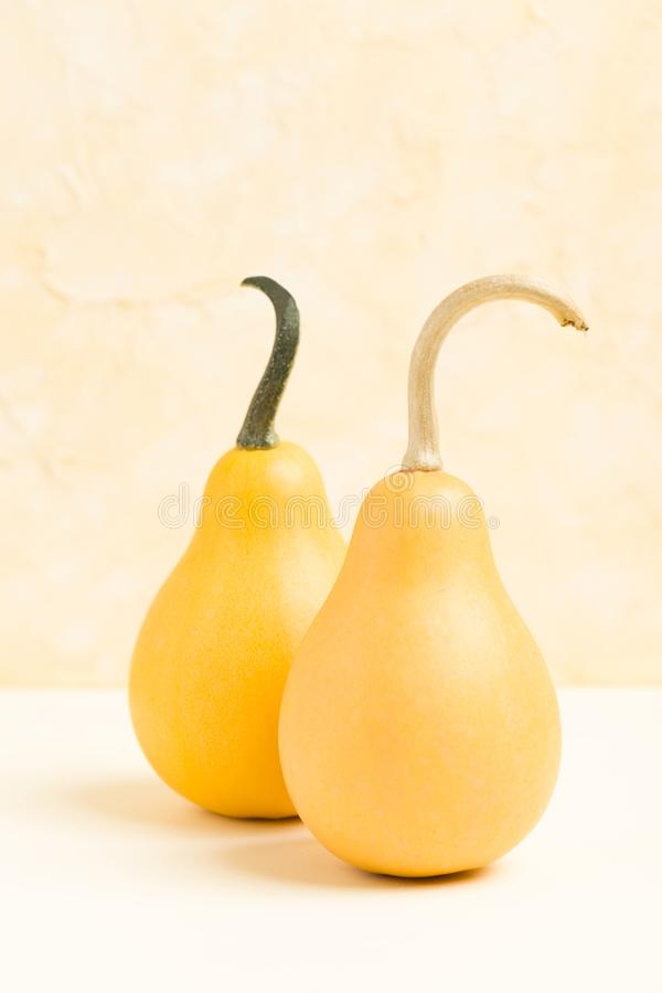Banie na pastelowym żółtym tle z kopii przestrzenią - pionowo sztandar z jesieni dojrzałymi warzywami fotografia stock