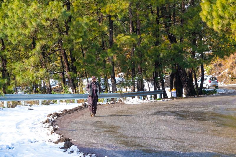 Banikhet, Dalhousie, Himachal Pradesh, Inde - janvier 2019 Apr?s des cons?quences des chutes de neige lourdes, promenade locale d images libres de droits