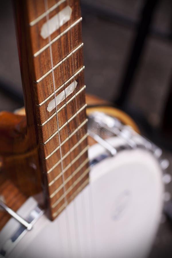 banjo arkivbilder