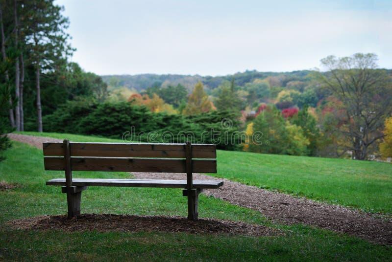 Bank auf Unterlassungsbunten Bäumen des falles des Hügels bei Morton Arboretum stockfotos