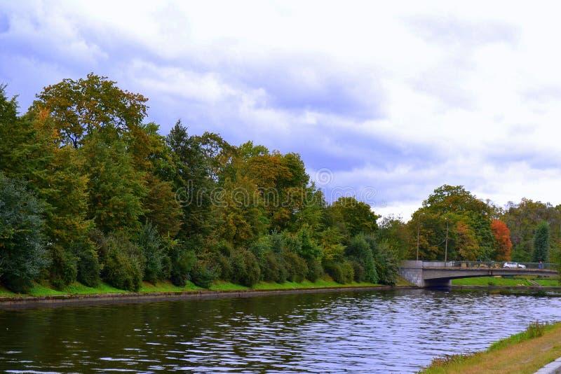 Bank des Flusses stockfoto