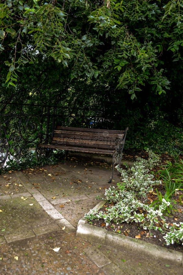 Bank in einem botanischen Garten lizenzfreie stockfotos