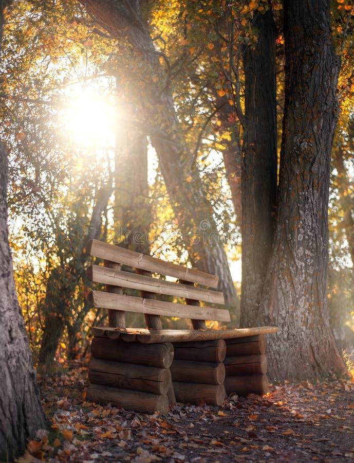 Bank in het de herfstpark stock foto's