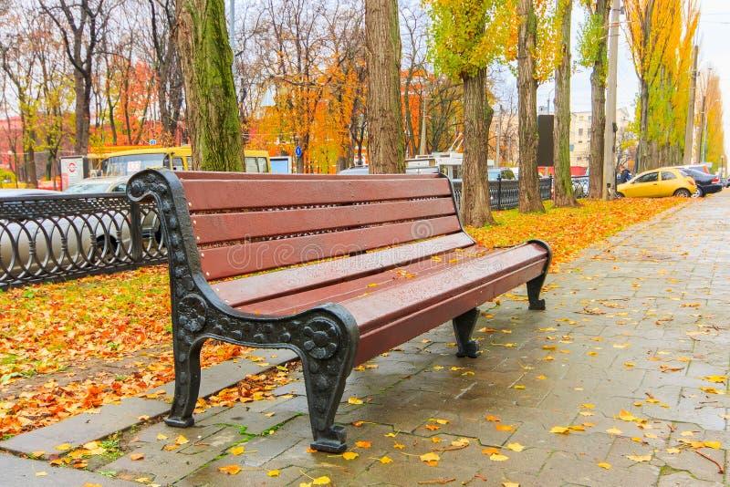 Bank in het mooie de herfstpark na regen royalty-vrije stock foto