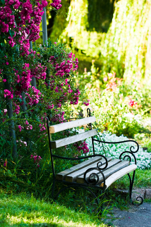 Bank im garten stockfoto bild von decorate field for Arreglar un jardin