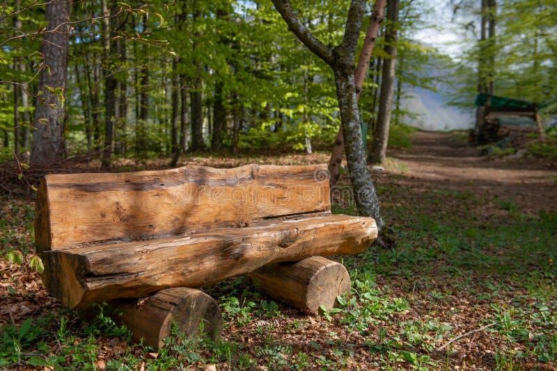 Bank im Holz lizenzfreies stockfoto