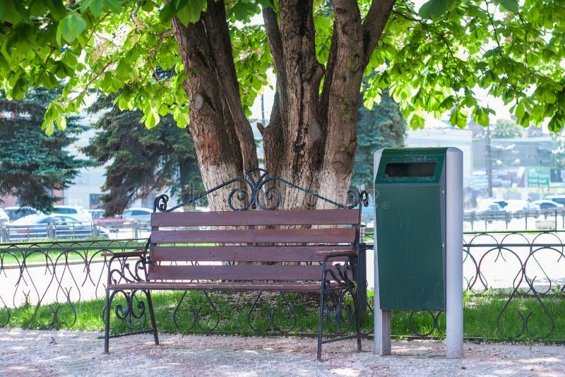 Bank mit Stadtabfalleimer im städtischen Park unter der blühenden Kastanie am sonnigen Tag stockfoto