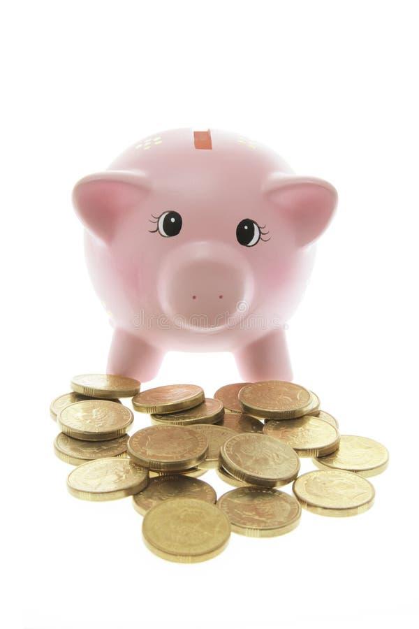 bank monety Świnka. zdjęcia stock