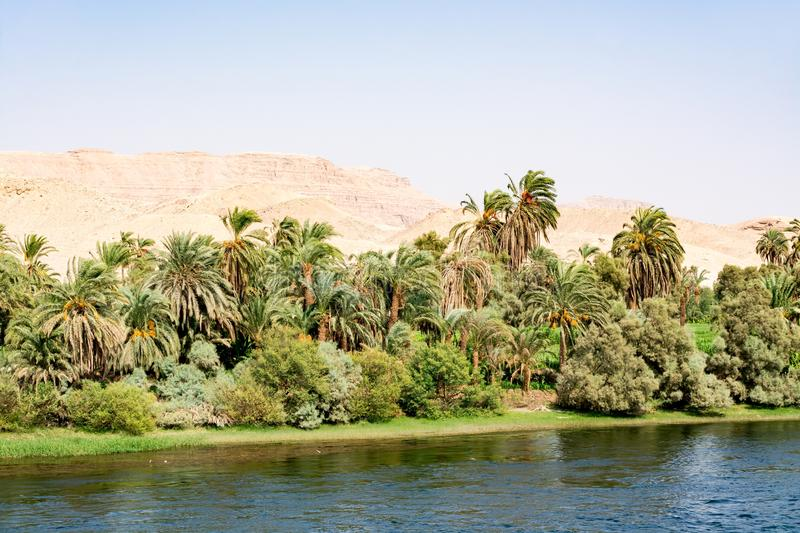 Bank of Nile river seen during touristic cruise, Egypt stock images