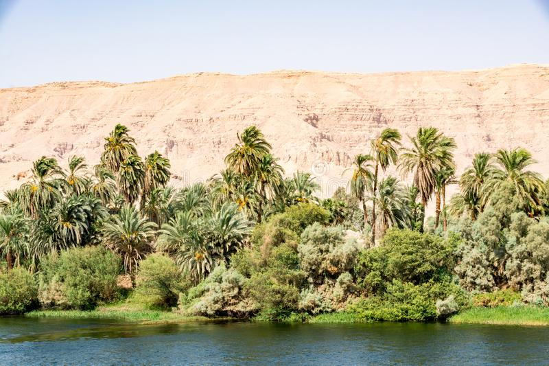 Bank of Nile river seen during touristic cruise, Egypt royalty free stock image