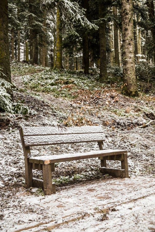 Bank onder sneeuw bij park in de wintertijd royalty-vrije stock foto