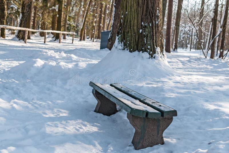 Bank op sneeuw in de steeg van het de winterpark stock afbeeldingen