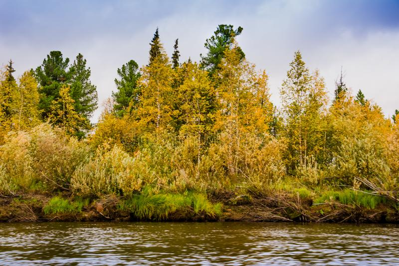 The bank of the river Nadym. Yamal. Arctic nature. Landscape stock photos