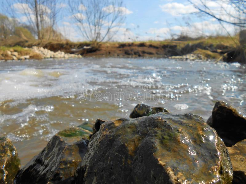 On the bank of rocky river in spring sunny day. Landscape on the bank of small rocky river in sunny weather with small bushes and small clouds, floating on the stock photo