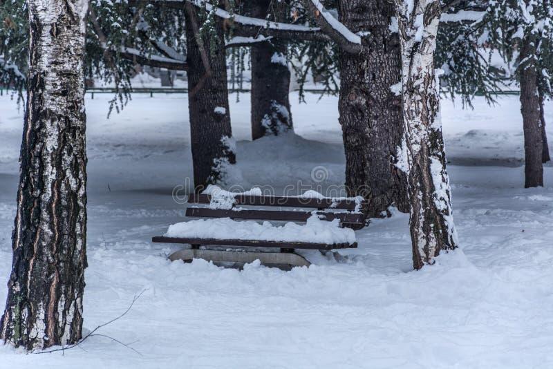 Bank in stadspark met grote sneeuw op de winter koude dag die wordt behandeld royalty-vrije stock foto