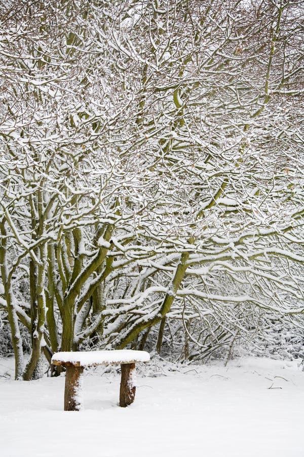 Bank und Holz im Schnee stockfoto