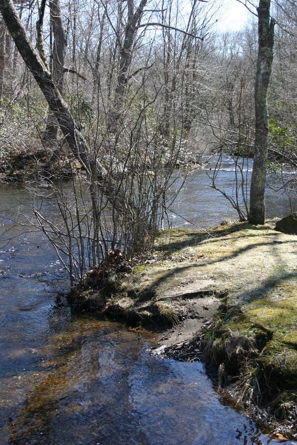 Bank van de rivier stock afbeeldingen