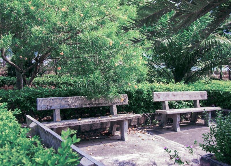 Bank voor een rust in een park in de wildernis in Vietnam stock fotografie