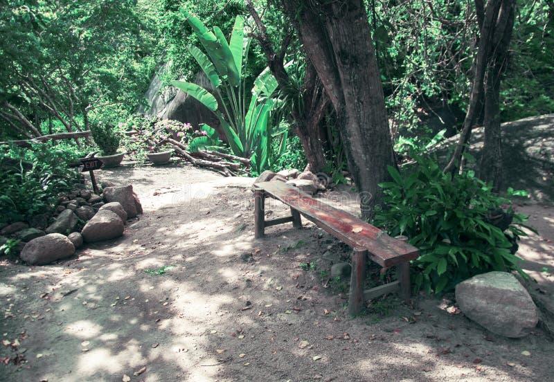 Bank voor een rust in een park in de wildernis in Vietnam royalty-vrije stock fotografie