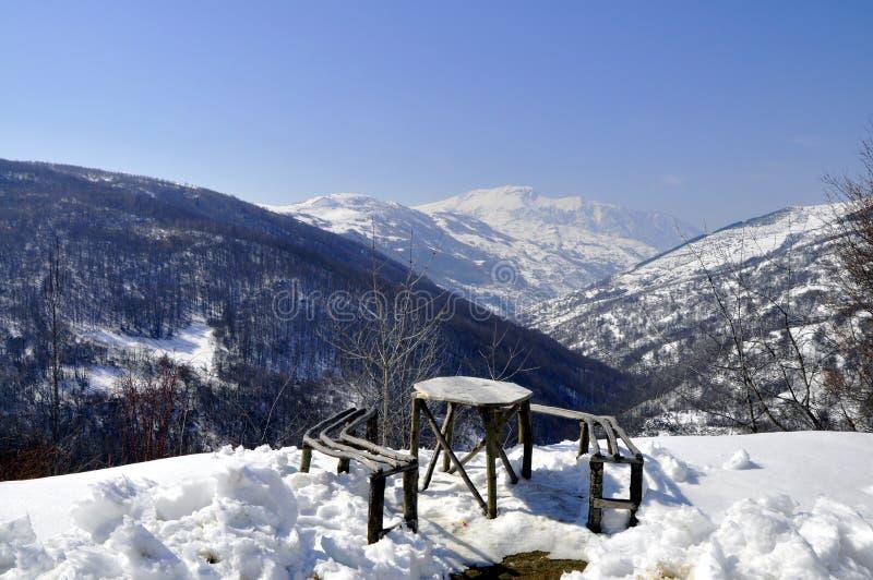 Bank voor rust die zich in sneeuw bevinden royalty-vrije stock afbeelding
