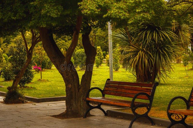 Bank voor rust in het park royalty-vrije stock foto's