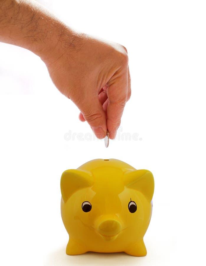 banka odosobneni prosiątka oszczędzania zdjęcie royalty free