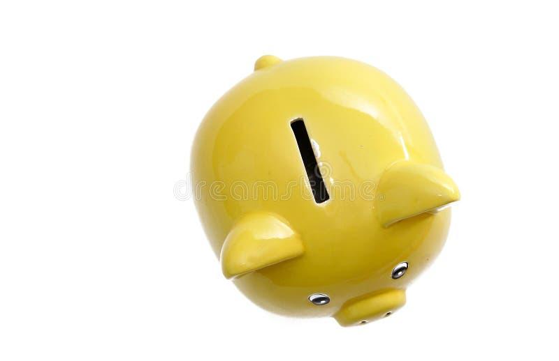 banka prosiątko zdjęcie royalty free